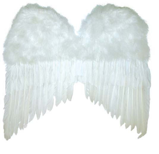 Ailes anges blanche
